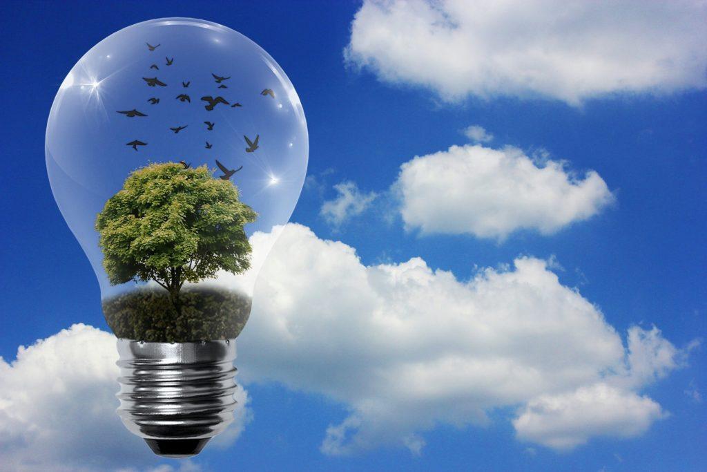 Comment mesurer l'impact écologique des entreprises ?
